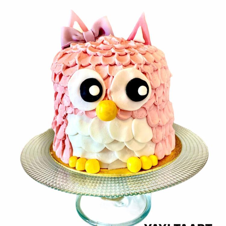 Taart breda roosendaal tilburg hoeven made oosterhout teteringen ettenleur cake owl uil uilentaart verjaardagstaart dierentaart vogeltaart