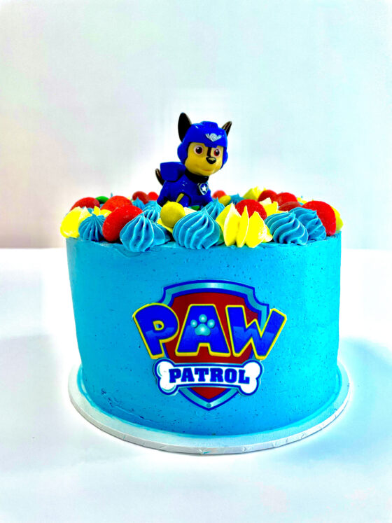 Paw Patrol, verjaardag, jongen, kind, verjaardagstaart, film, bioscoop, taart, Breda, Etten-leur, Roosendaal, Dordrecht, hond